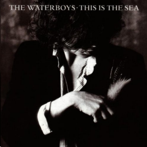cover of This Is The Sea