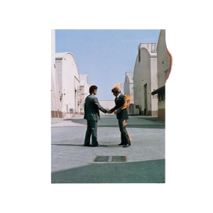 cover of Wish You Were Here